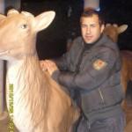 Poză de profil pentru vally76