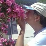 Poză de profil pentru ROSETTA